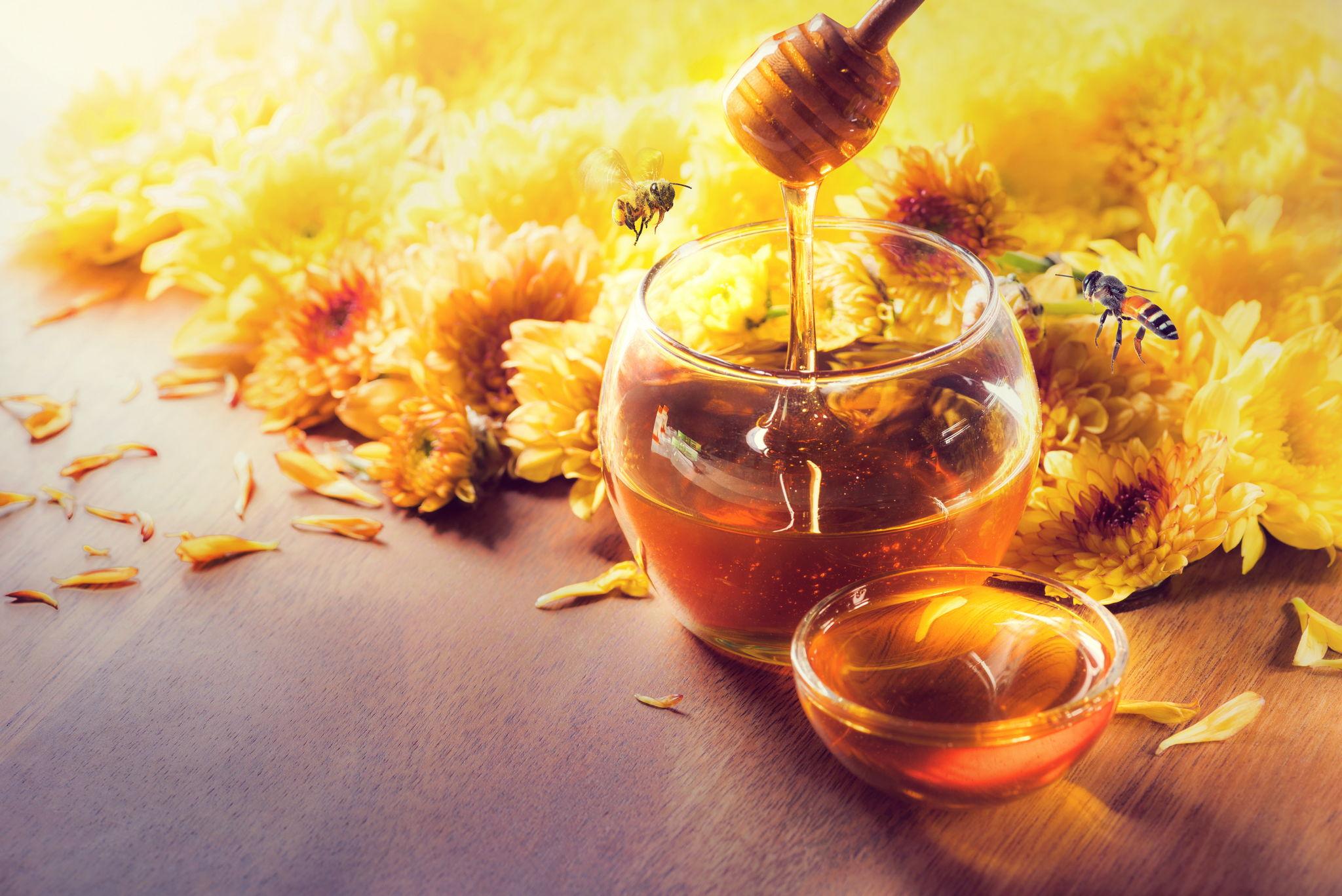 Мёд: виды и особенности