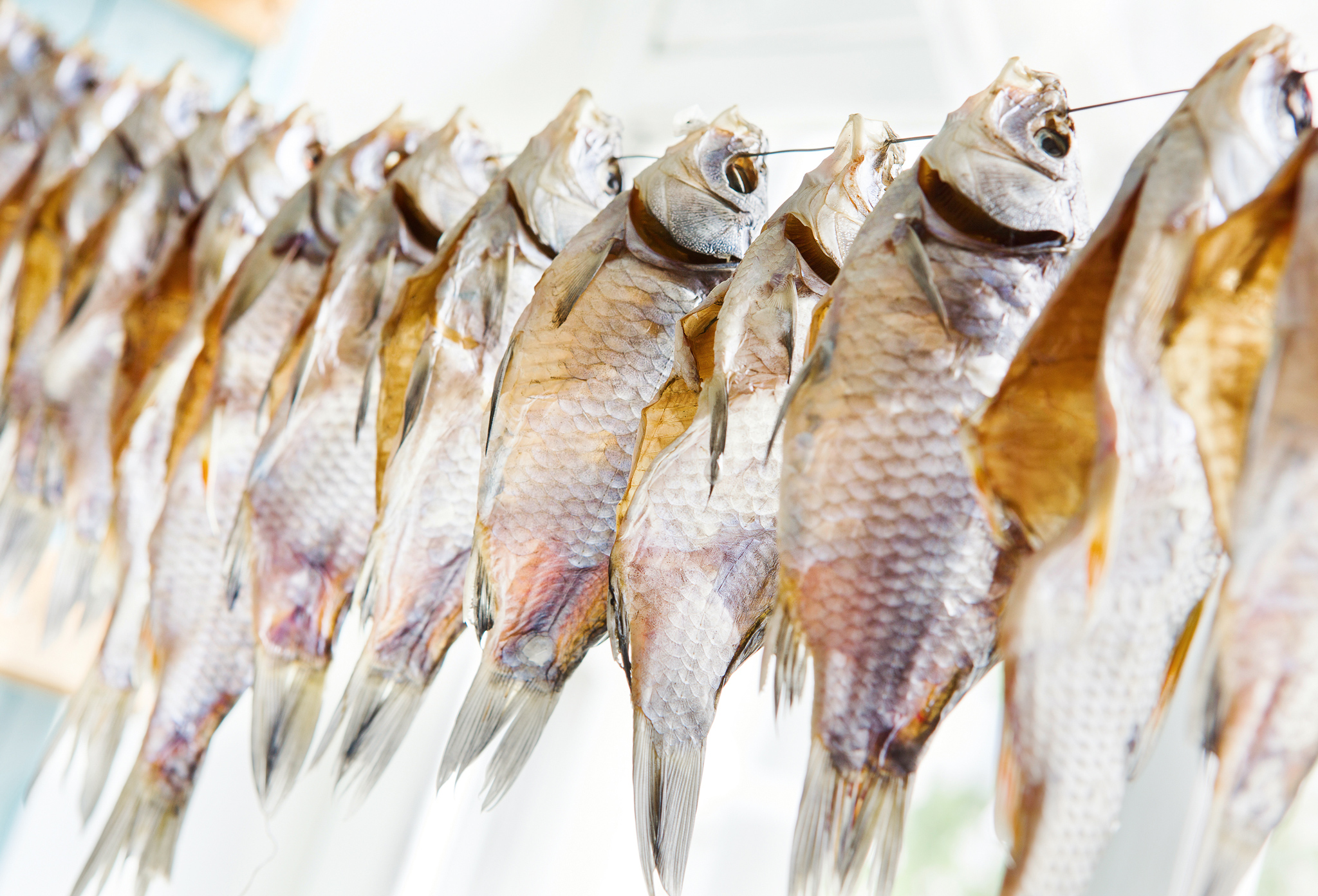 Вяление рыбы