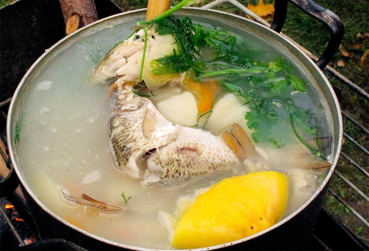 Особенности варки рыбы