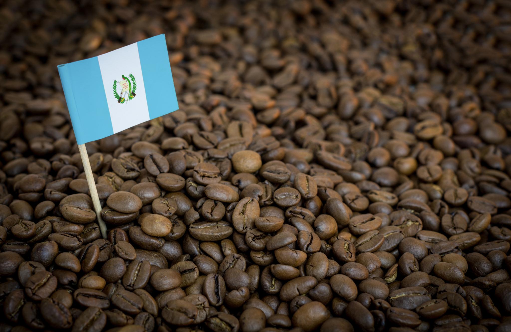 Кофе «Илли Гватемала»