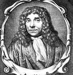 PSM V58 D585 Antonius A Leeuwenhoek pp 1
