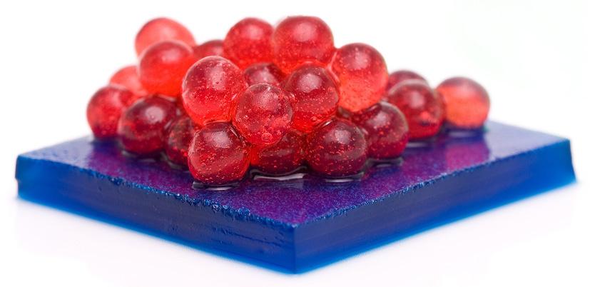 molekulyarnaya gastronomiya 834x402
