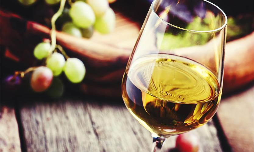 vine aligote 2