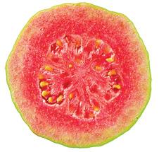 guava cut