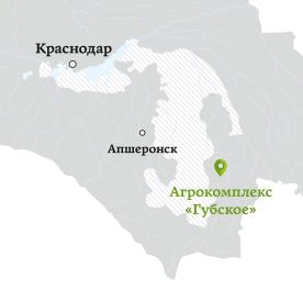 gubskoe map