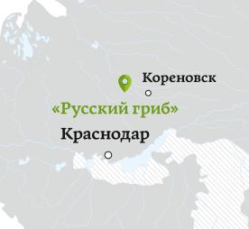 rus grib map