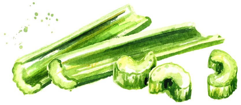 celery draw