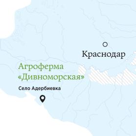 map divnom